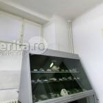 a_propunere-muzeul-antipa-arhitect-tudor-popa-10