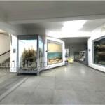 muzeul antipa_02