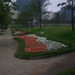 poze coreea de sud_10