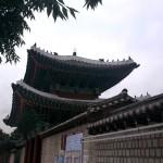 poze coreea de sud_12