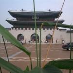 poze coreea de sud_21
