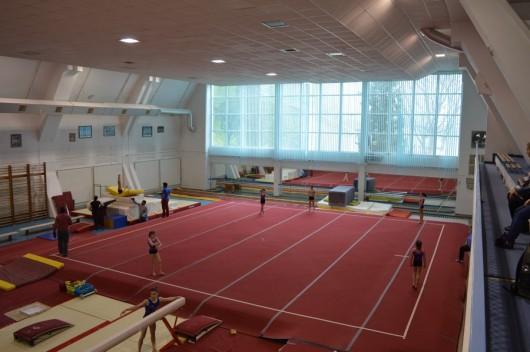 Lotul olimpic de gimnastica deva_13