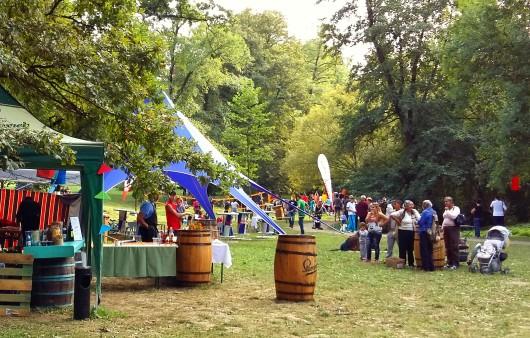Focus Festival Sibiu 2015